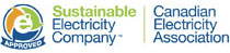 Sustainable Electricity Company Logo